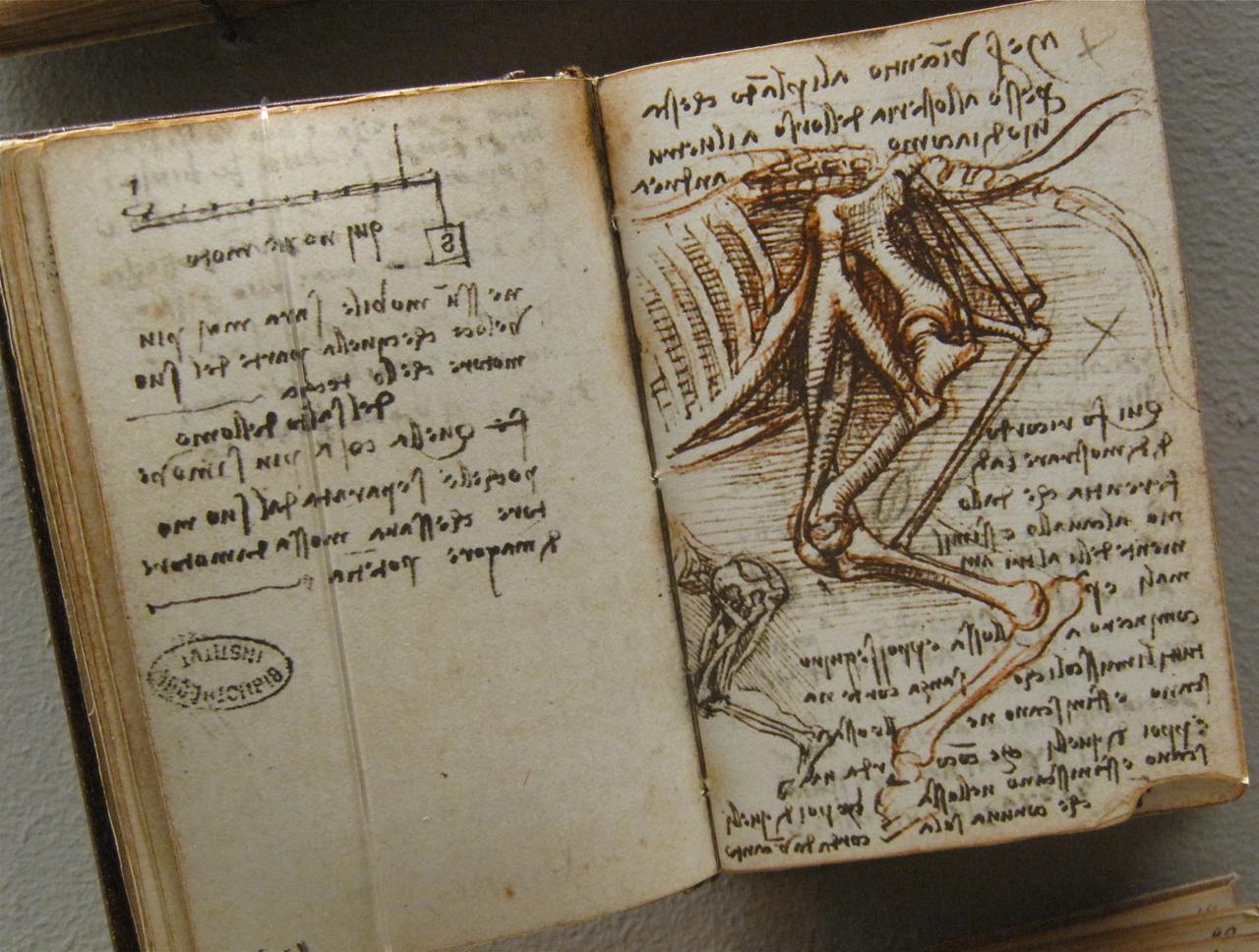 manuscrit-leonard-de-vinci
